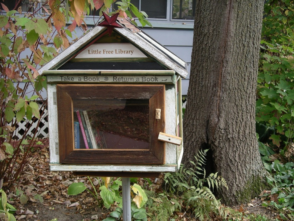 Little+Free+Library
